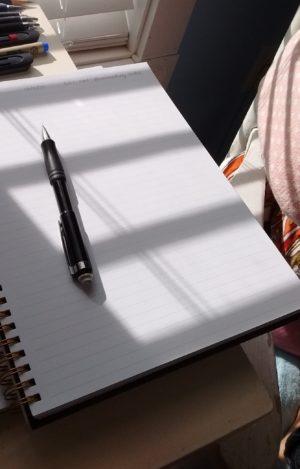 screenshot of sunlit paper